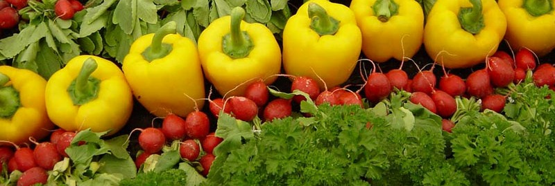 Pembangunan Pertanian Untuk Meningkatkan Ekonomi Perdesaan Di Era